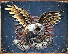 LIVE TO RIDE EAGLE MOTORCYCLE SIGN