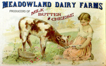 MEADOWLAND DAIRY FARMS SIGN