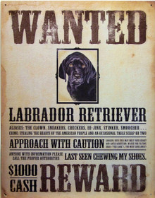 GREAT HUMOR AND COLOR IN THE BLACK LAB WANTED SIGN, THERE ARE HOLES IN EACH CORNER FOR QUICK MOUNTING