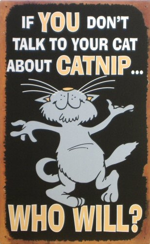 Photo of CATNIP, IF YOU DON'T TALK TO YOUR CAT ABOUT CATNIP, WHO WILL?