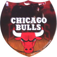 Photo of CHICAGO BULLS SMALL INTERSTATE SHAPED SIGN