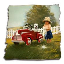 SUDS & SHINE AT THE CAR WASH BIRCH TATTERED WOOD PRINT S/O*