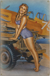 CAN I HITCH A RIDE JEEP  NOSE ART  AIR FORCE VINTAGE METAL SIGN S/O*