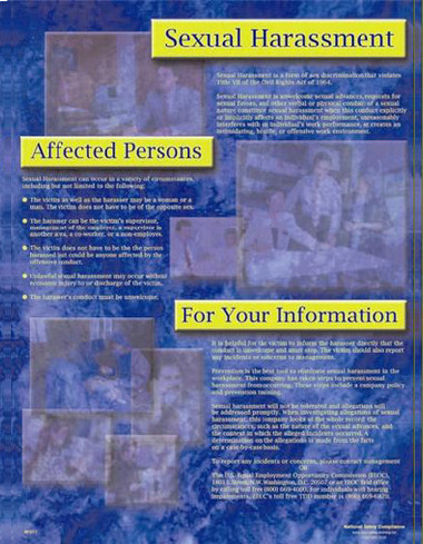Sexual Harassment Informational Posters in ENGLISH  pic 1