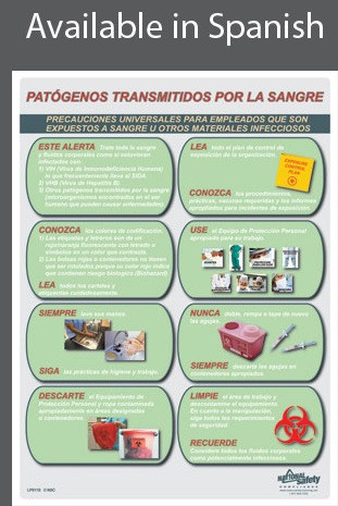 BBP Information Poster in SPANISH  pic 1