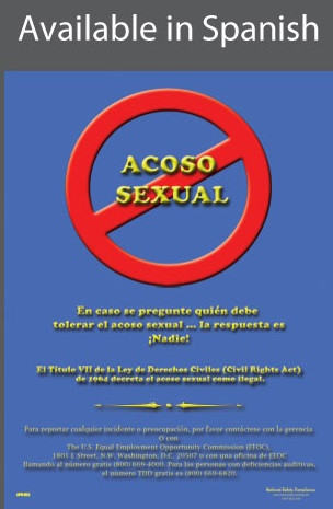 Do Not Commit Sexual Harassment Poster in SPANISH  pic 1