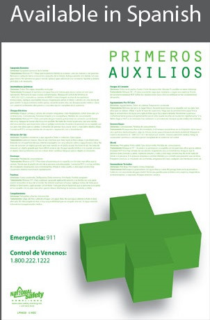 First Aid Safety Poster in SPANISH  pic 1