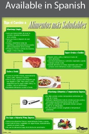 Safer Food Poster in SPANISH  pic 1