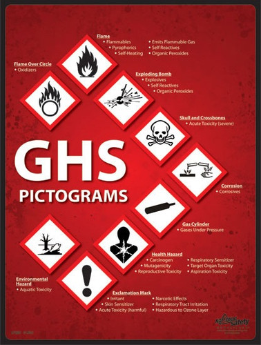 Pictograms Safety Posters in ENGLISH  pic 1