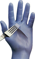 Best N-Dex Disposable 4 Mil Powder Free Nitrile Gloves Pic 1