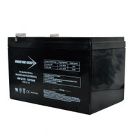 Bright Way Group 12V 12Ah SLA Battery with F2 Terminal