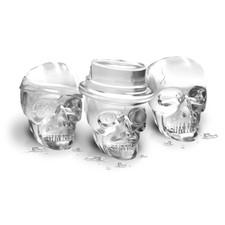Skull Ice Molds-1