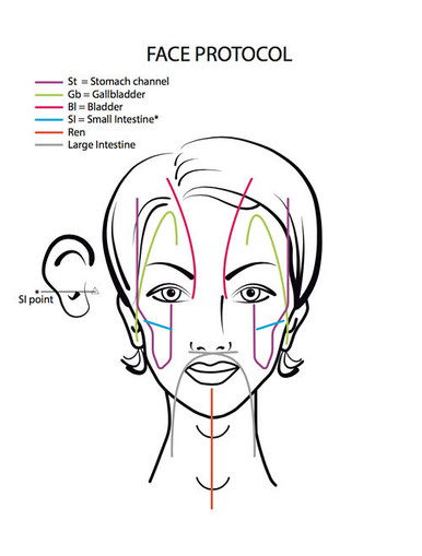 8 1/2 x 11 protected reference chart for Dr. Lucas' Mei Zen Cosmetic Acupuncture Facial Protocol.