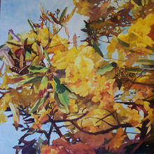 "Tabebuia  An original watercolor on archival museum quality Ampersand Aquabord by internationally recognized artist, Karen Vernon  No glass required.  Picture Image 24"" x 24""  Ships in USA only"