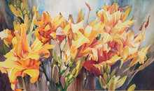 """Stella de Oro and More  36"""" x 60""""  picture image framed in a gold frame  42"""" x 66"""" framed  Original watercolor on archival Ampersand Aquabord by Karen Vernon   Yellow and orange day lilys dance on a neurtral and textured surface in this original painting."""