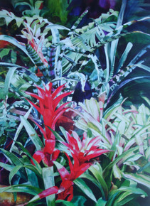 Flames from the Rainforest  Offset lithograph from the original by Karen Vernon  23 x 17