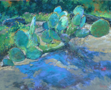 "Prickly Pear Shadows is an original pastel painting by internationally recognized artist, Karen Vernon.   Pastel on Ampersand archival museum Pastelbord  Picture Image 16"" x 20""  Ships framed in a black plein air frame with ArtGlass  Made in Texas, USA  Ships in USA only"