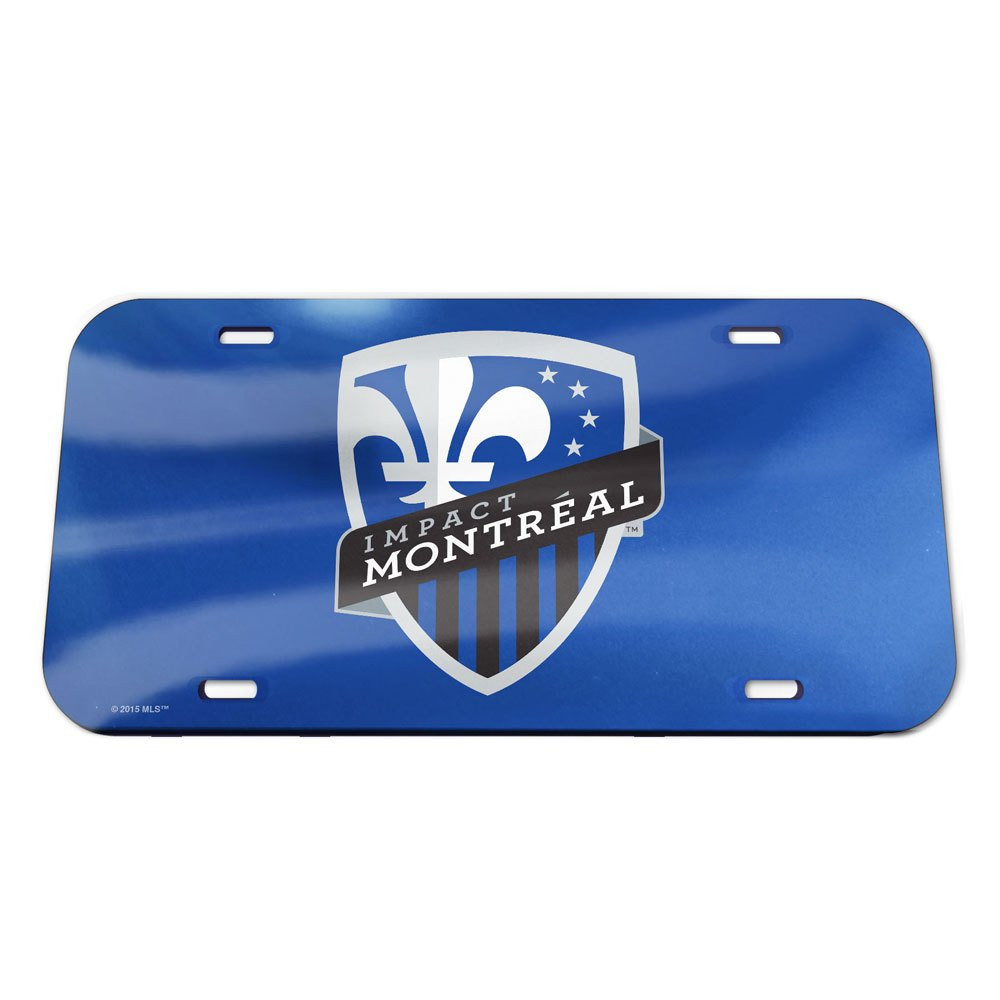 WinCraft Soccer License Plate