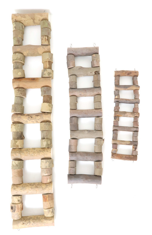 Natural ladder showing small, medium and large