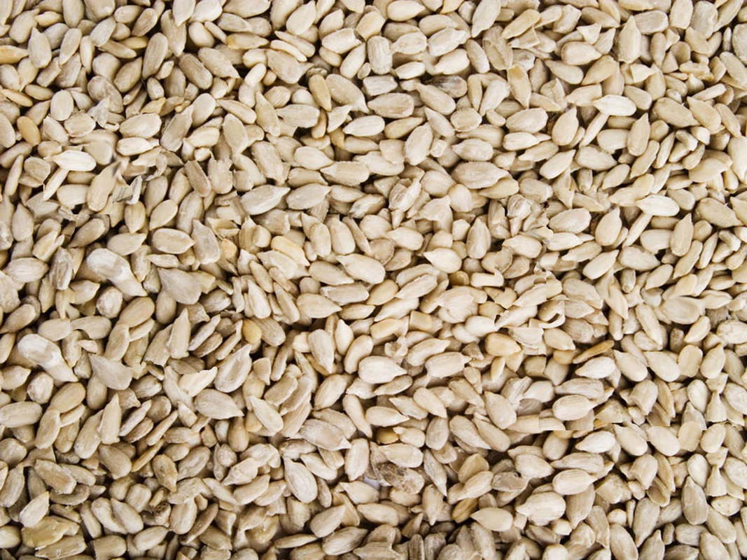 Hulled Sunflower Seed