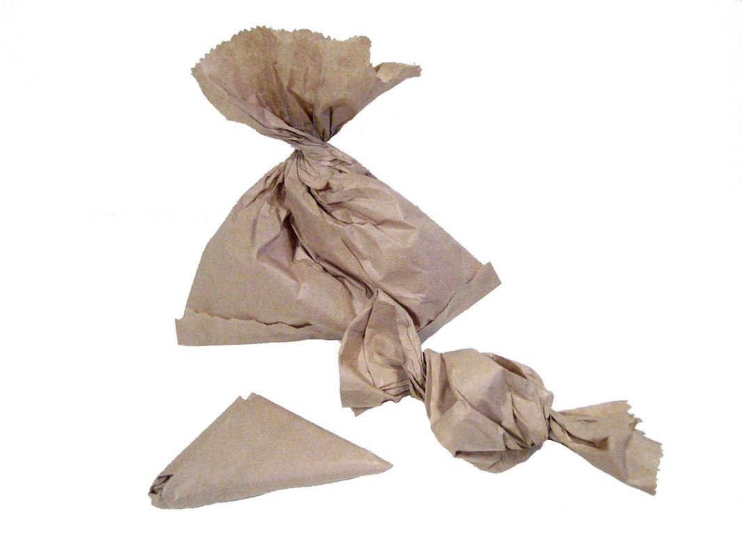 Foraging Paper Bags