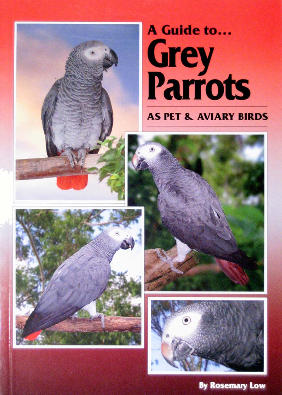 Cover of the book: ABK Grey Parrots