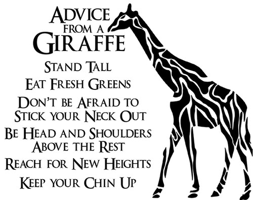 SD988 Advice from a Giraffe