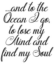 Find my Soul