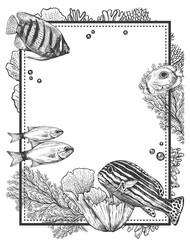 Framed Seascape