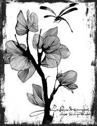 Tamashii Dragonfly Collage