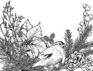 Bird and Poinsettia Border