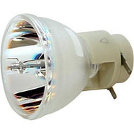 Acer EC.J9900.001 Replacement Lamp