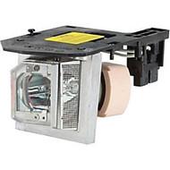 Acer EC.JBU00.001 Replacement Lamp