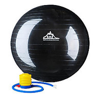 Black Mountain Products 2,000-lb Static Strength Stability Ball With Pump, 55cm, Black
