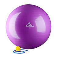 Black Mountain Products 2000 lb Static Strength Stability Ball With Pump, 65cm, Purple