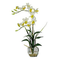 Nearly Natural Dendrobium With Glass Vase, Cream