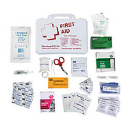 DMI; 25-Person Basic First Aid Kit With Waterproof Box, 9 3/16 inch;H x 6 1/2 inch;W x 2 3/4 inch;D, White