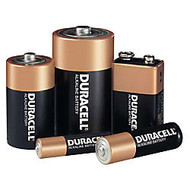 Duracell AA CopperTop Batteries - AA - 24 / Pack