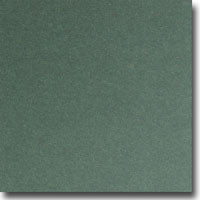 "Shine Moss 8 1/2"" x 11"" 107 lb. cover weight Metallic Cardstock"