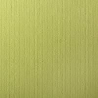 "50 Pack Eames Furniture Tivoli Green 80 Lb. Cover Square Borderless Cards 7 1/4"" X 7 1/4"""