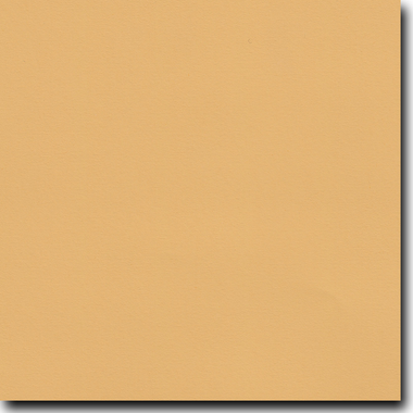 """Flavours Gourmet Caramelized Mustard 8 1/2"""" X 11"""" Cover Weight Matte Cardstock (25 Per Package)"""