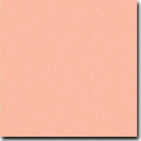 "Basis Coral 8 1/2"" x 11"" text weight Matte Paper"