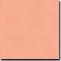 "Basis Coral 8 1/2"" x 11"" 80 lb. cover weight Matte Cardstock"