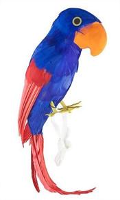 /parrot-on-your-shoulder/