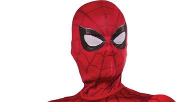 Spidermans kids mask