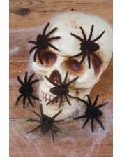 Mini hairy spiders color black