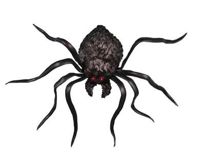 shaking spider