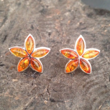 Sterling silver and cognac amber multi stone star stud earrings