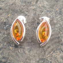 Baltic amber and sterling silver marquise stud earrings