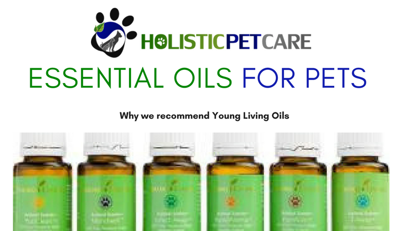 essential-oils-for-pets-1-.png